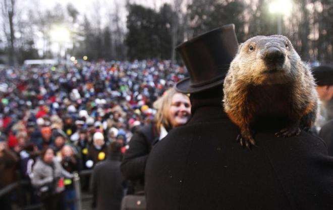 groundhog-day-2014