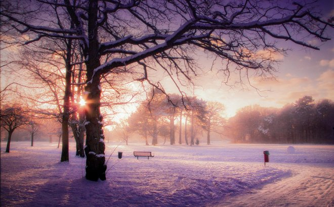 stock__winter_sunset_1_by_needanewname-d4t4avh