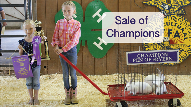 sale of champions_v
